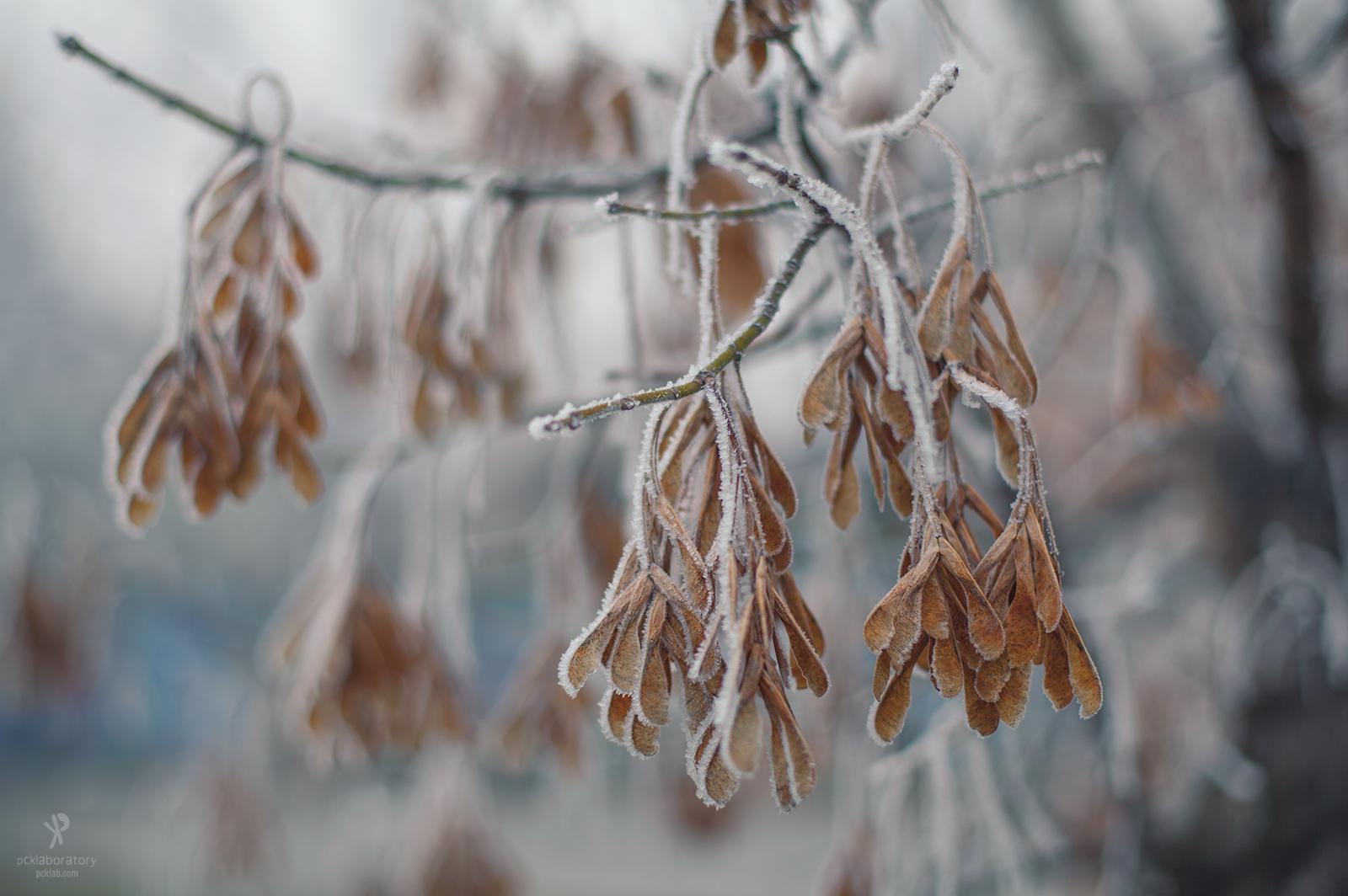 Минусни температури утрово во поголем дел од Македонија
