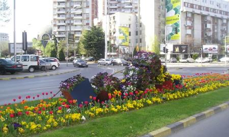 ФОТОГАЛЕРИЈА: 5000 лалиња во цветните леи низ Скопје