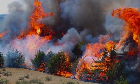 ДЗС: Активни пожари во Чашка, Македонски Брод и Маврово Ростуше
