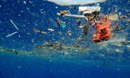 НАУЧНИЦИТЕ ВО ПАНИКА: Пронајдена пластика во телата на морските суштества на дното на океанот