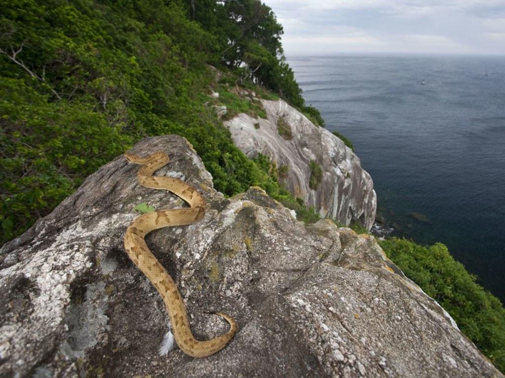 ЗАБРАНЕТ ПРИСТАП: Пет локации на Земјата кои не смеете да ги посетите