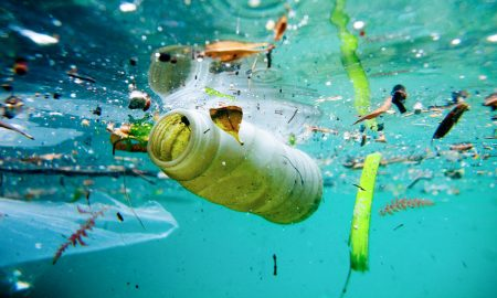 Папата побара човештвото да престане да фрла пластика во морињата